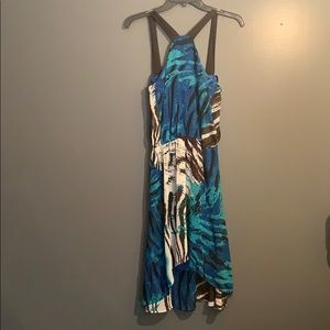 Blue zebra print dress